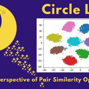【深層距離学習】Circle Lossを徹底解説 -Deep Metric Learning関連のCVPR2020採択論文まとめ-