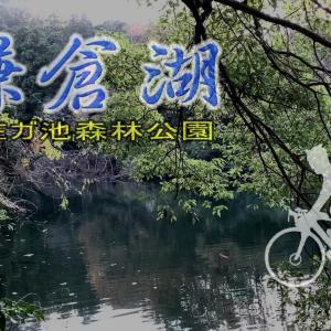 鎌倉湖(散在ケ池)