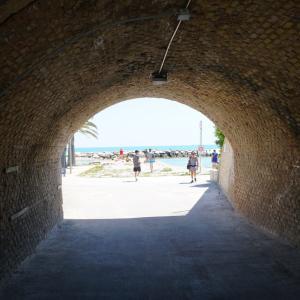 この日はアドリア海で verso le Marche vol.3