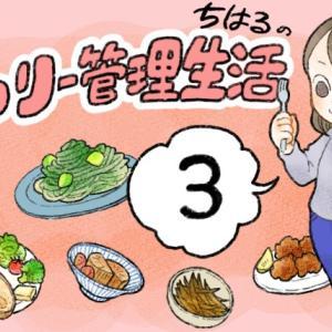 カロリー管理生活(3)
