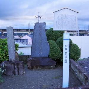 佐野の舟橋