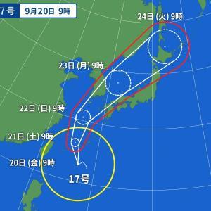 台風とミロクトレ。