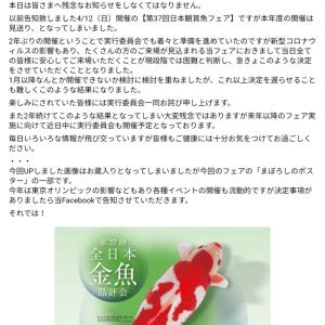 日本観賞魚フェア中止決定。