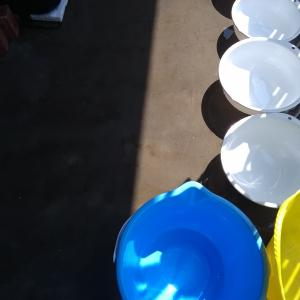 換水DAYS~青水との戦い~