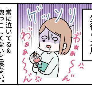 【まとめ】ばべちゃん1年間の眠り