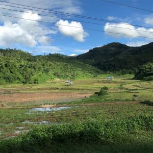 「タイからラオスへ」ルアンパバーン |東南アジア旅エッセイ③