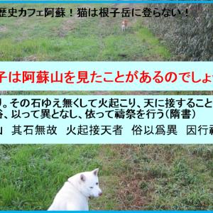 藤ノ木古墳は法隆寺の近くにある!