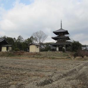 法起寺は飛鳥時代の代表的建物ですが・・・