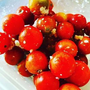 ミニトマト超簡単 激うまレシピ
