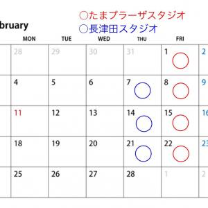 Lesson schedule of February