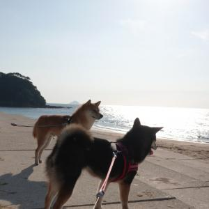 九州の旅 : 旅のまとめ