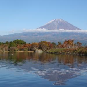 ぶらり富士宮 後編 : 白糸の滝と田貫湖