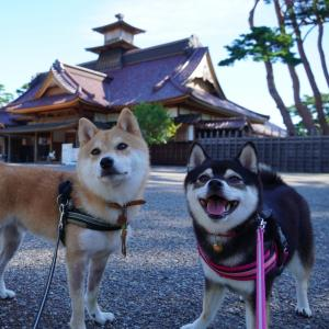 北海道の旅4日目-1|函館トラピスチヌ修道院と五稜郭