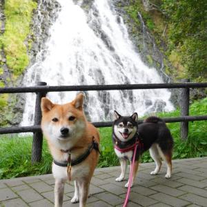 北海道の旅9日目-1|さよなら知床・オロンコ岩とオシンコシンの滝・天に続く道へ