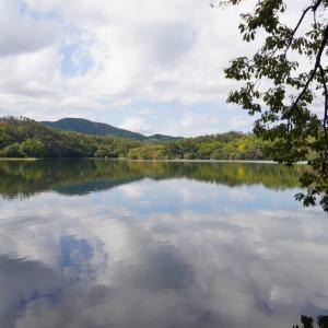 伊豆へおでかけ-1|小室山と一碧湖・ペット可のごはん処 稲の花でランチ