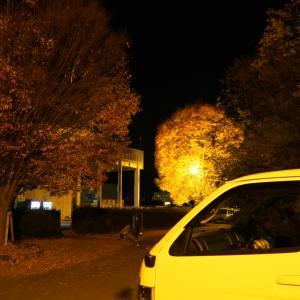 山梨紅葉狩り1日目-3|道の駅にらさきで車中泊・気持ちいいお散歩が出来る道の駅