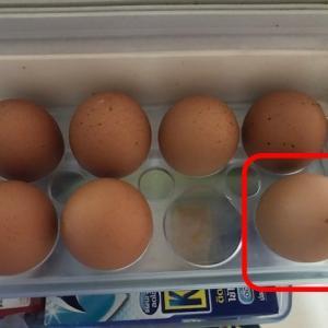 卵事件(上)