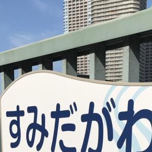 隅田川 / Der Sumida / Sumida River