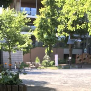 お池 / der Teich / pond