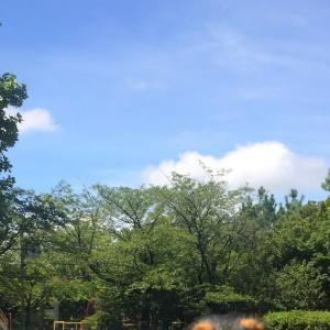 青い空 / der blaue Himmel / the blue sky