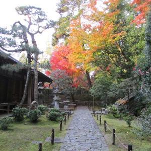 京都旅行(10)