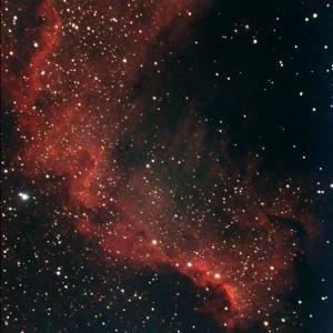 北アメリカ星雲の一部