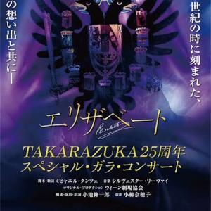 【宝塚】 エリザベート TAKARAZUKA25周年 スペシャル・ガラ・コンサート  スペシャルver