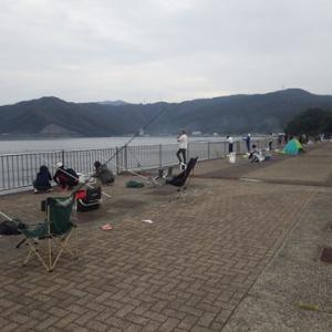 敦賀新港 ジギング エギング タコ釣り サビキ釣り