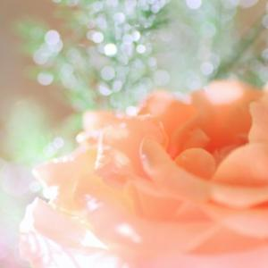 この痛みや悲しみは、あなたが私を愛した証です。