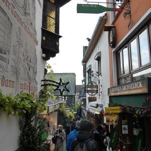 【ドイツ 旅行記】楽しみ方のご紹介~その3 おすすめスポット ワインの名産地、リュ―デスハイムに行こう♪