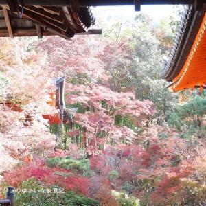 【京都旅行記】その11 楽しみ方のご紹介~おすすめ紅葉スポット 「そうだ 京都、行こう。」の舞台、『毘沙門堂』に行こう~2018年11月21日編♪