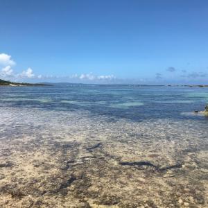 沖縄本島ウェーディング