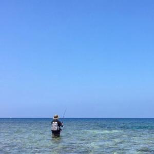 沖縄本島ウェーディング。