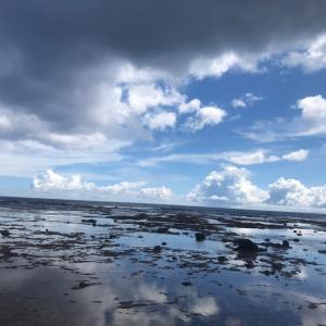 沖縄本島北部ウェーディング