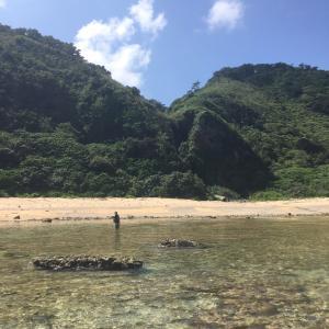 沖縄本島ウェーディング シャローゲーム