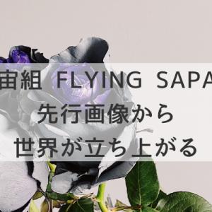 宙組FLYING SAPA1枚の画像から世界が立ち上がる