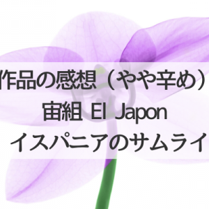 宙組「El Japonイスパニアのサムライ」作品の感想(やや辛め)