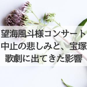 望海風斗様「NOW! ZOOM ME!!」中止の悲しみと、宝塚歌劇に出てきた影響
