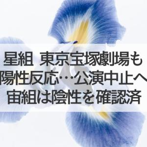 星組東京宝塚劇場も公演中止…自主的な検査の実施