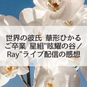 世界の彼氏華形ひかるの卒業~星組「眩耀の谷/Ray」大千秋楽