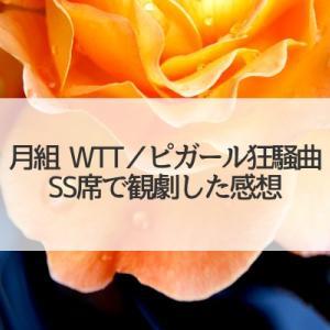 SS席どセンターで観劇した月組「WTT/ピガール狂騒曲」感想