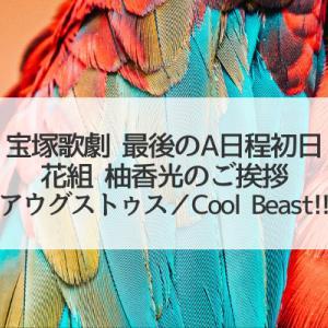 最後のA日程初日(花組「アウグストゥス/Cool Beast!!」柚香光のこと)