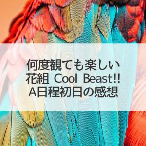何度見ても楽しみ花組Cool Beast!!(A日程初日の感想)