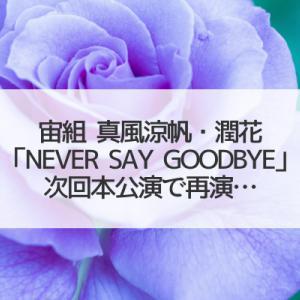 真風涼帆・潤花「NEVER SAY GOODBYE」再演…/望海風斗が瀬戸かずや・冴月瑠那と共演!