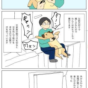 爪切り ②