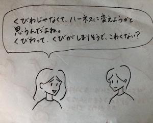 ワイルド3連発① (首輪)