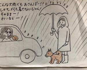 ワイルド3連発③ 大雨