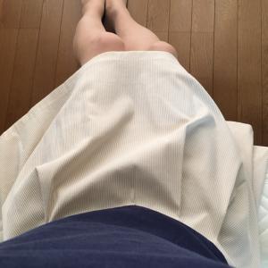 プチ変身・新シリーズ…