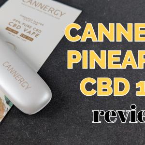【使い切りタイプ】CANNERGY『CG1S PINEAPPLE CBD10%』レビュー