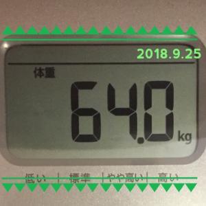 ダイエット168日目 ~めちゃくちゃ美味しかった低糖質ロールケーキ~